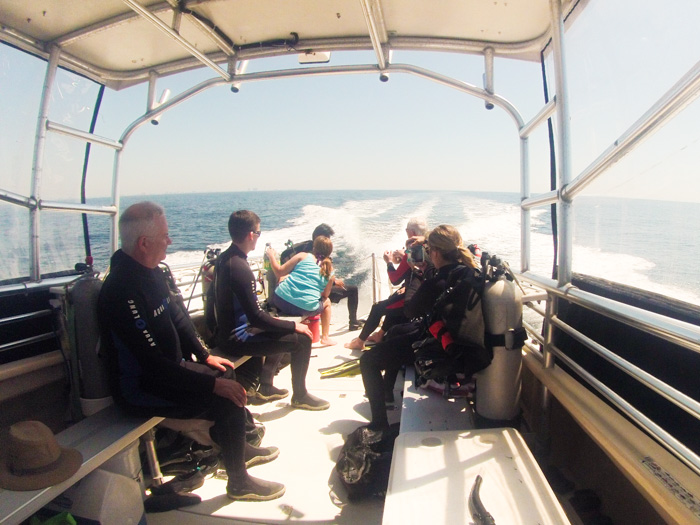 Diving with Diver's Den in Panama City Beach, Florida