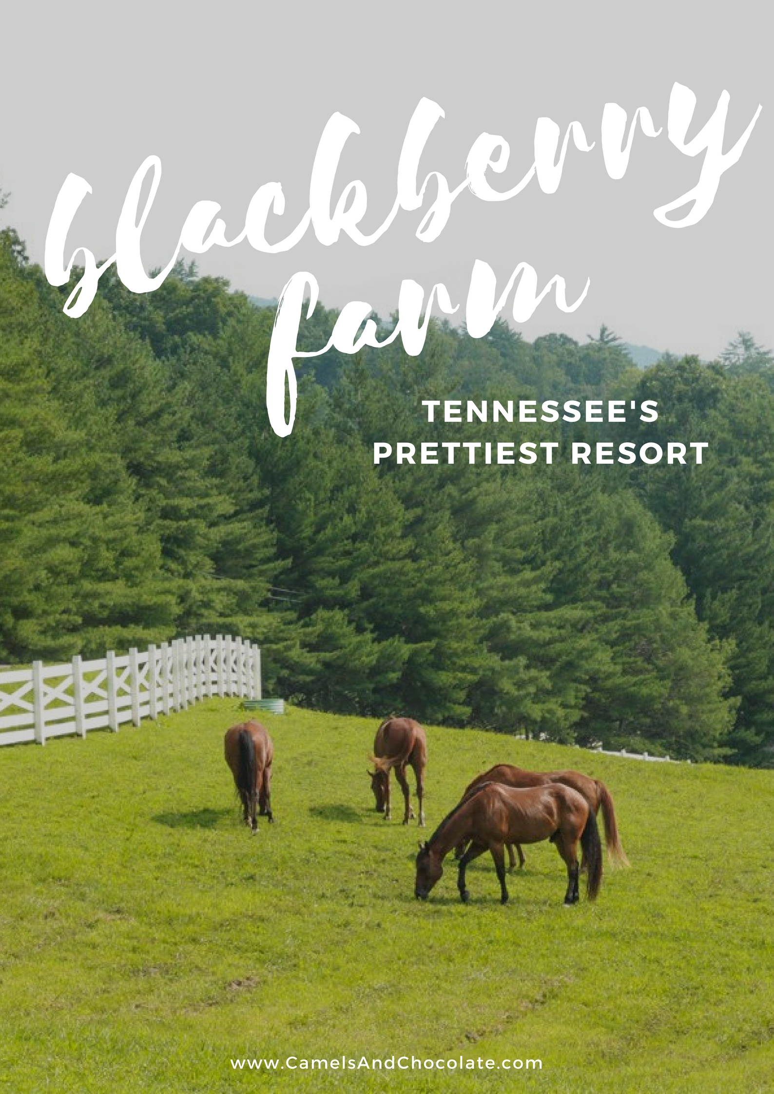 Tennessee Weekend Getaway: Steal Away to Blackberry Farm