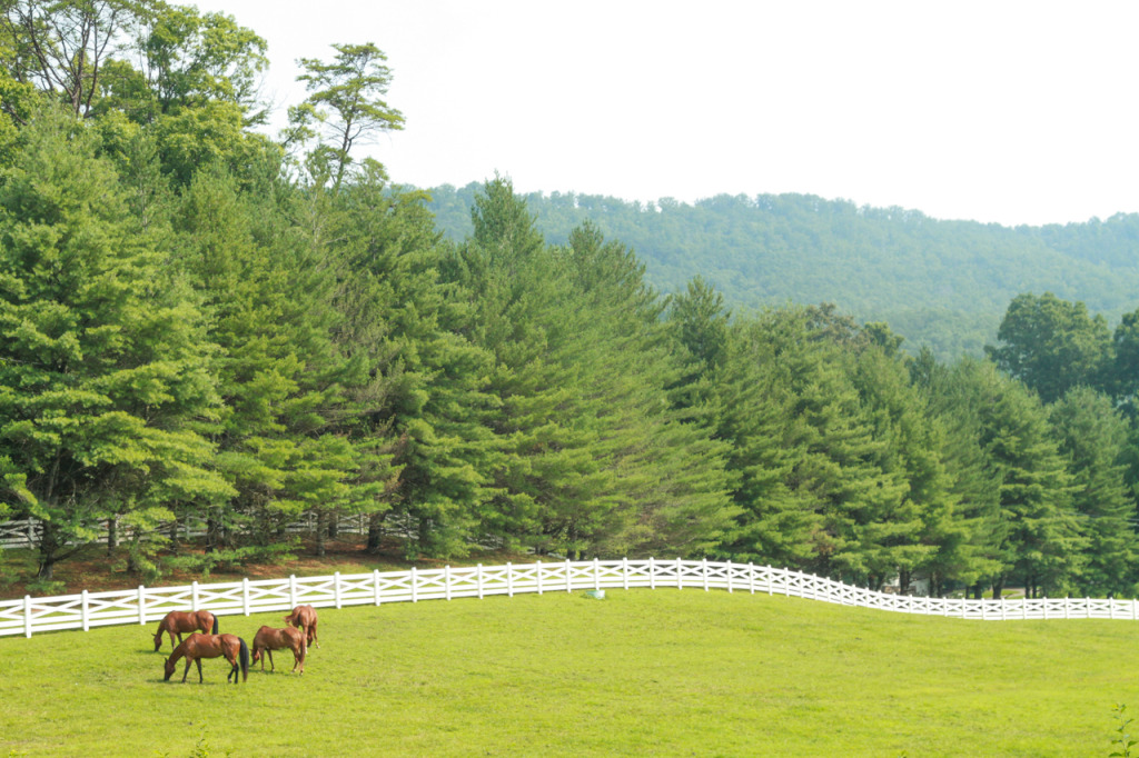 Blackberry Farm in the Tennessee Smokies