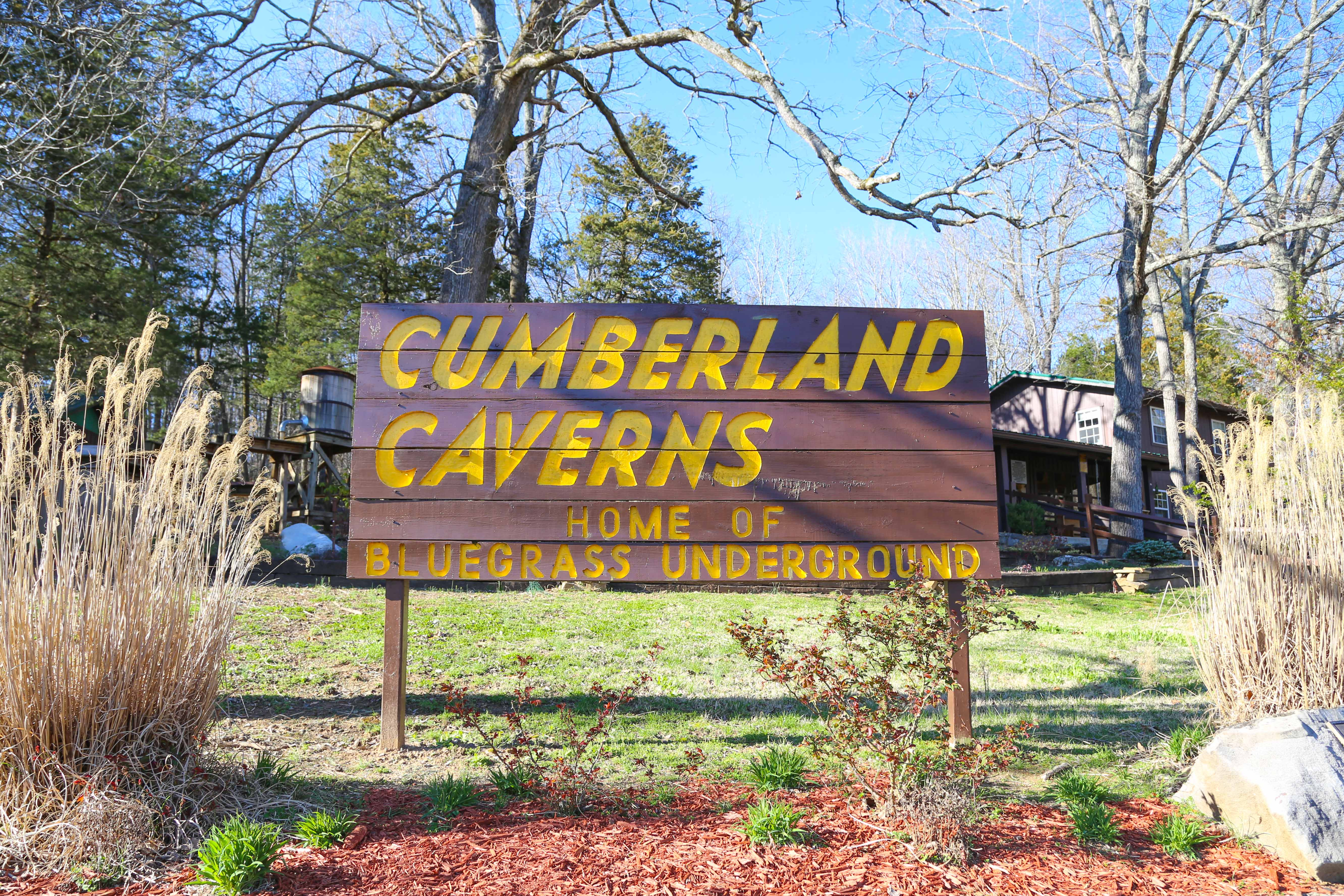 Bluegrass Underground, deep in the belly of a Tennessee cave, is one of the most surreal concerts you'll ever experience.