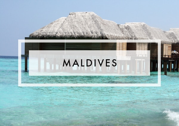 Posts on maldives