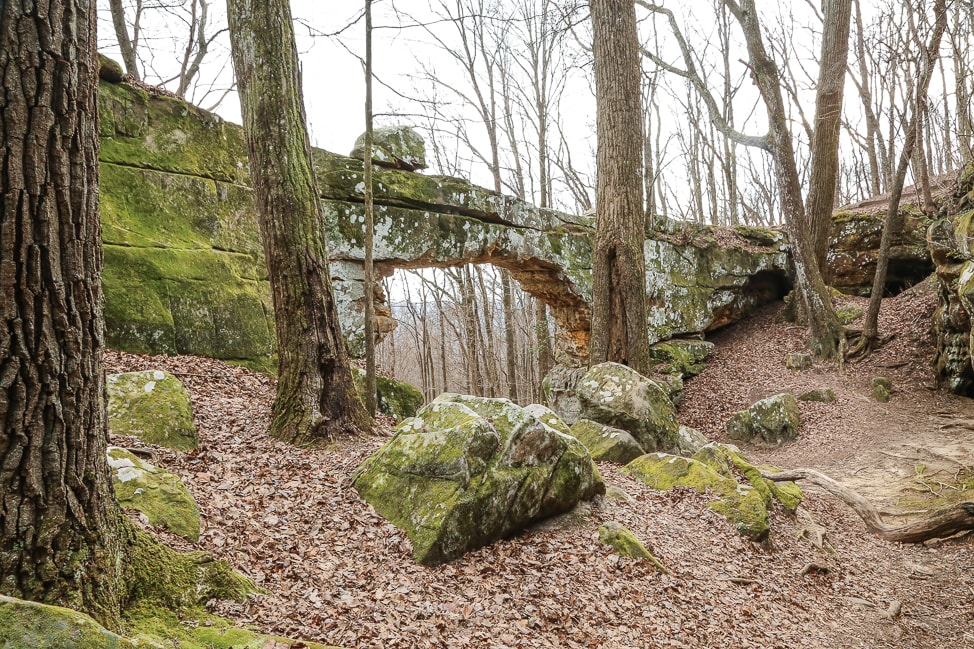 Hiking with Dogs: Sewanee's Natural Bridge Trek in Tennessee