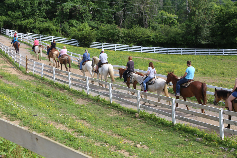 Smoky Mountain Vacation: Planning the Perfect Weekend Escape to Sevierville, Tennessee
