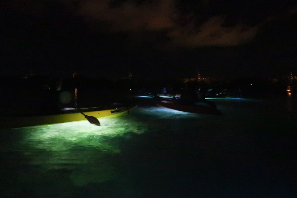 Night Paddleboarding in Key West: Water Sports to Try in the Florida Keys