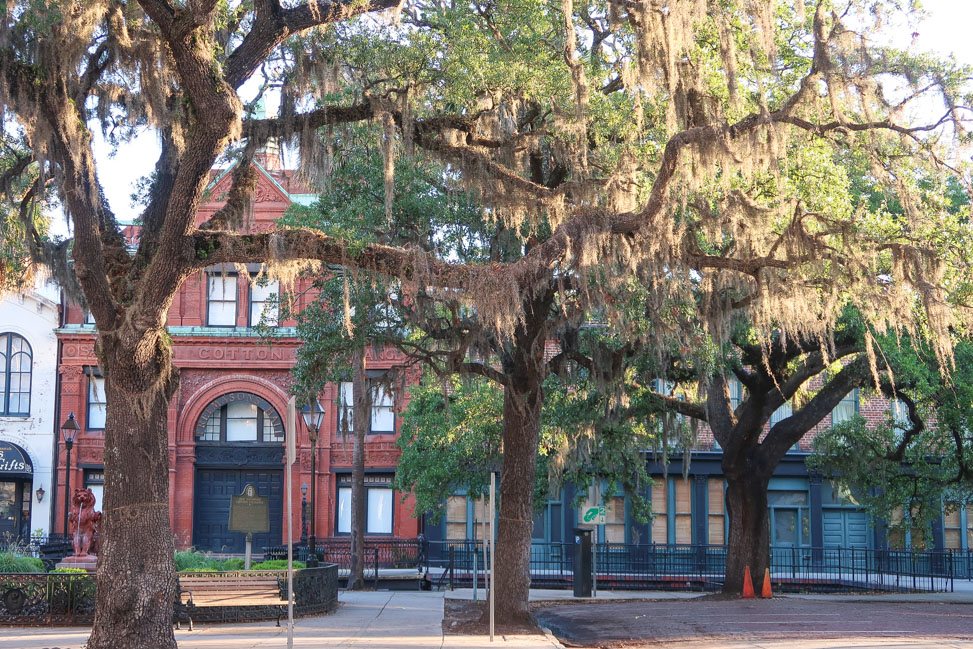 Architecture Tour in Savannah