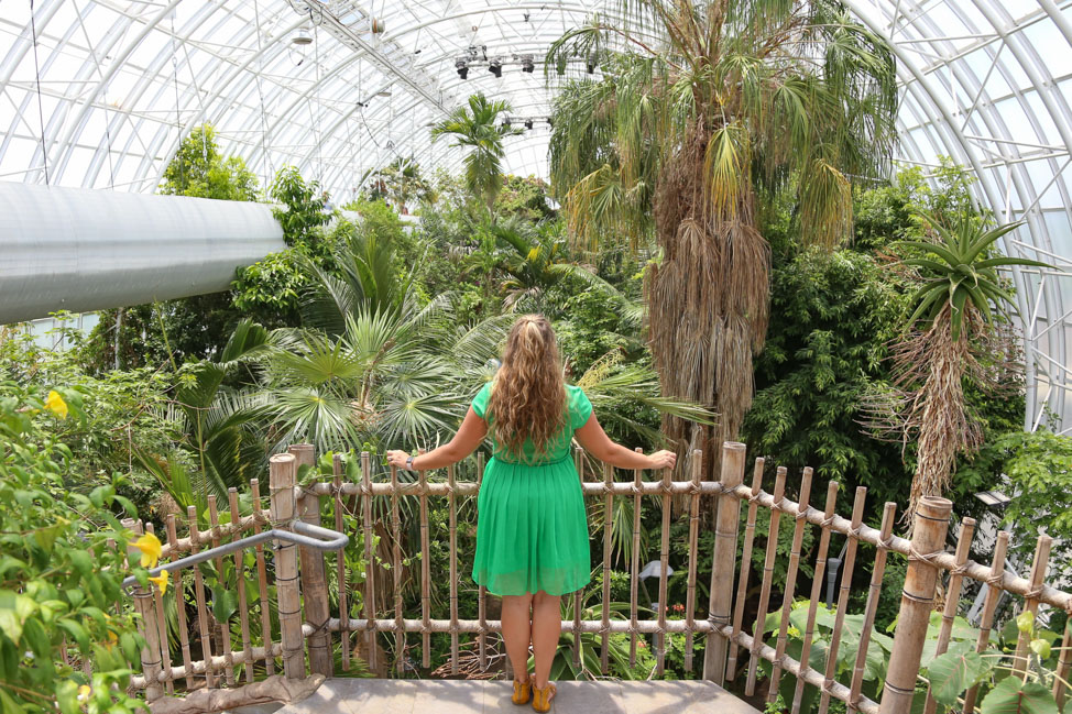 Oklahoma City in Summer: Myriad Gardens' Crystal Bridge