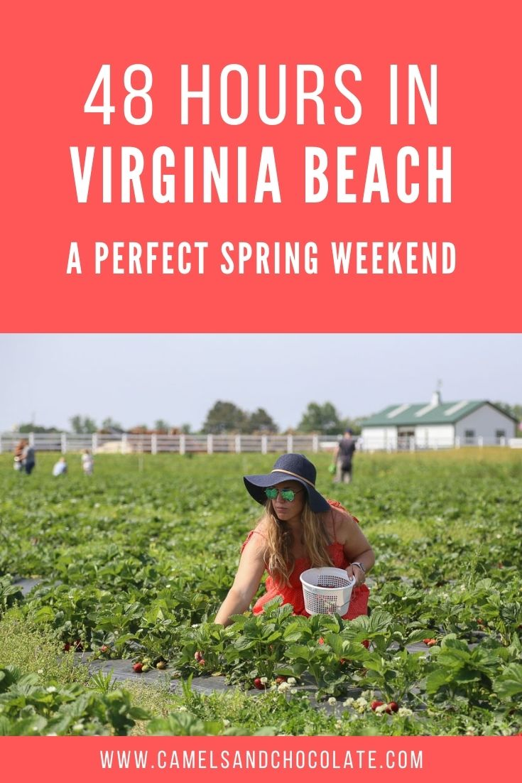 48 Hours in Virginia Beach: How to Plan the Perfect Spring Weekend