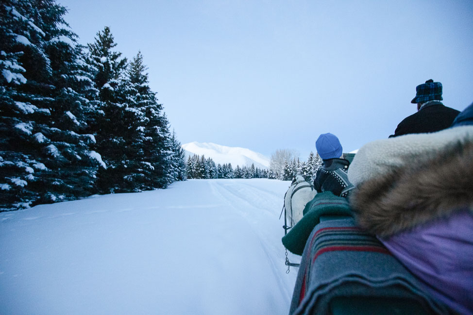 Sleigh Rides for Sun Valley, Idaho
