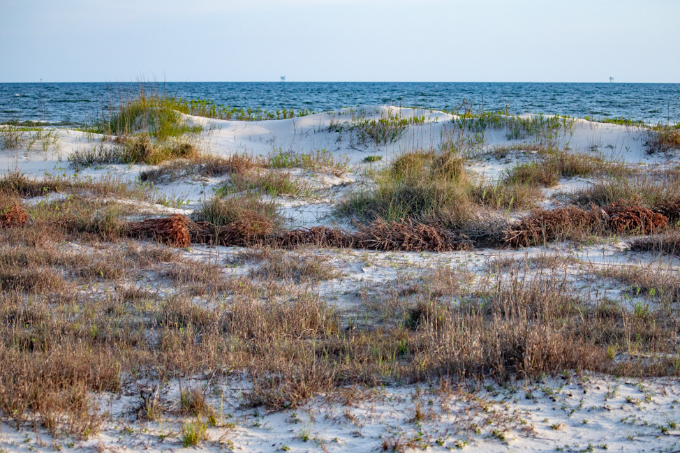 Renting a House on Dauphin Island, Alabama