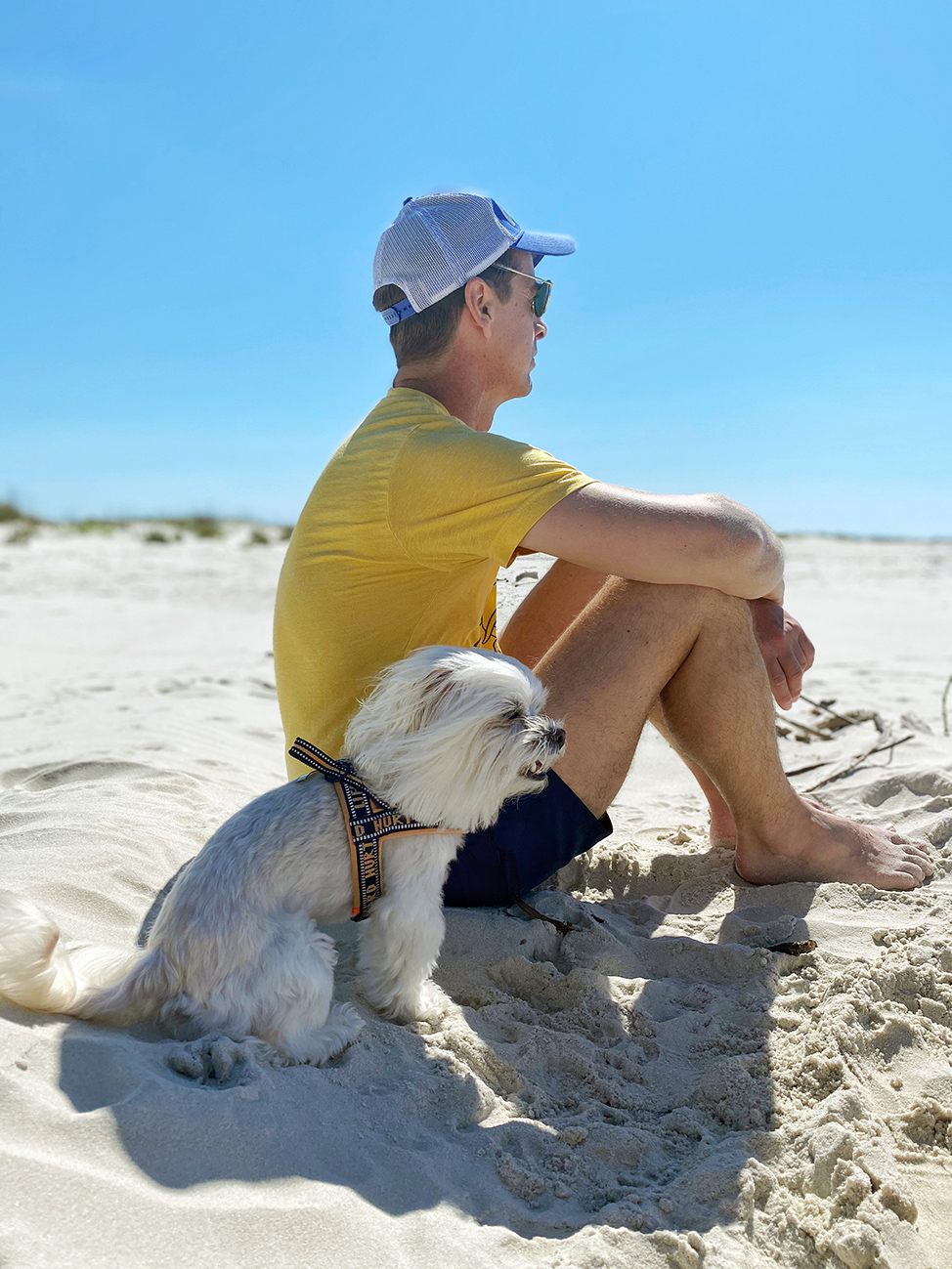 Dauphin Island: A pet-friendly beach vacation in Alabama