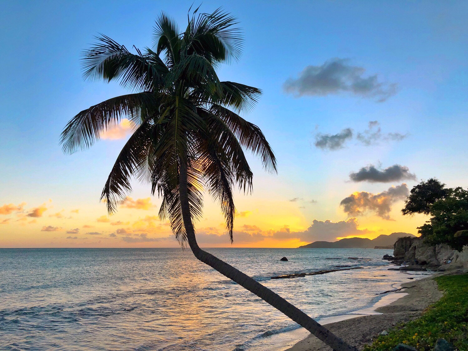 Traveling to Vieques, Puerto Rico