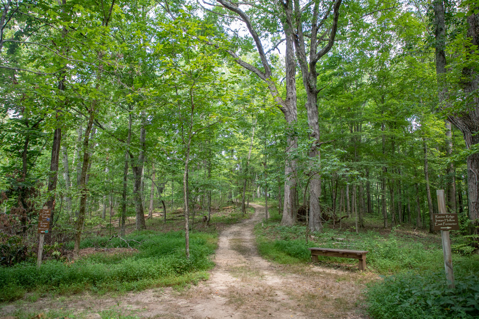 Timberland Park in Franklin, Tennessee