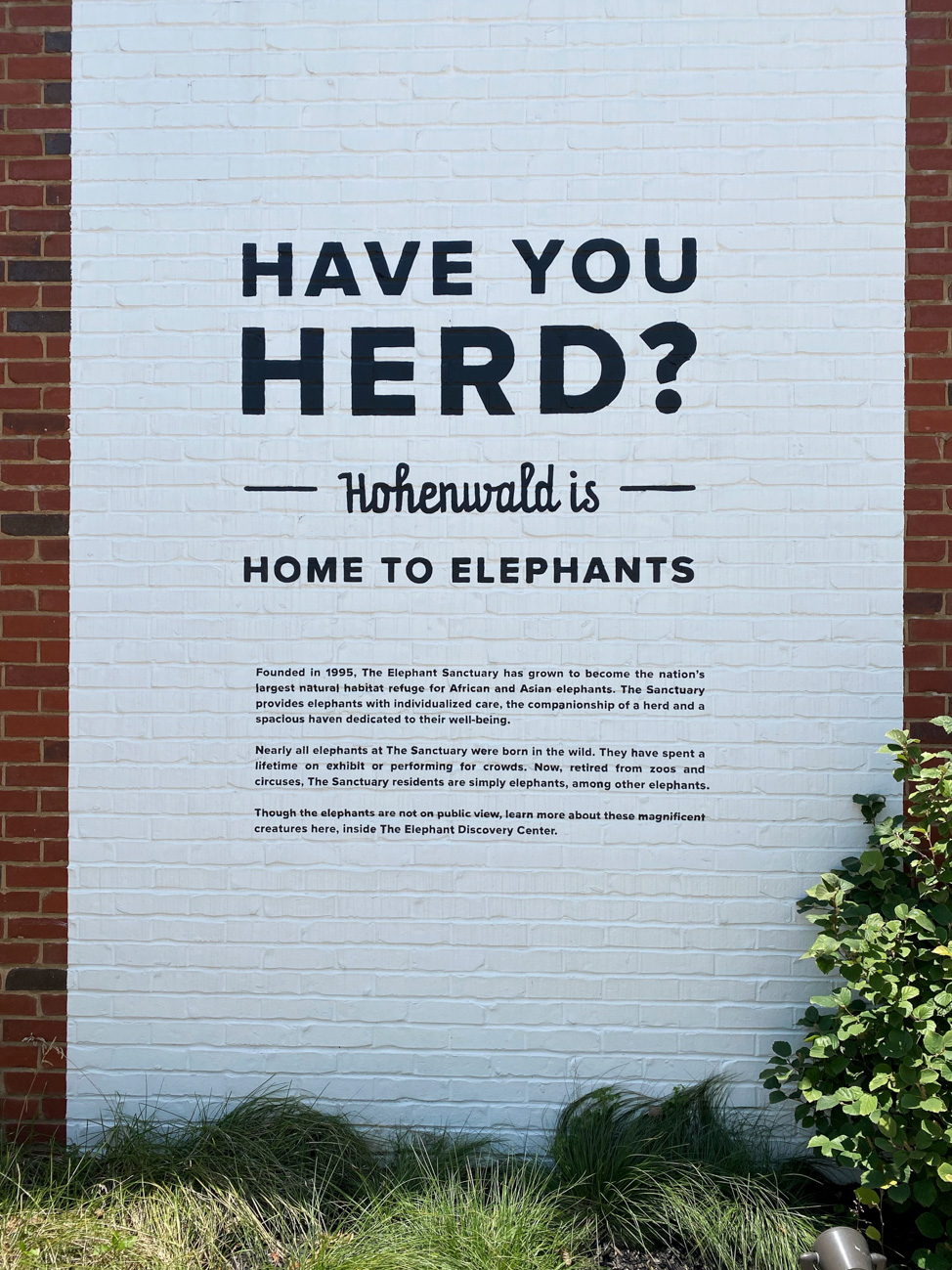 Elephant Sanctuary in Hohenwald, Tennessee