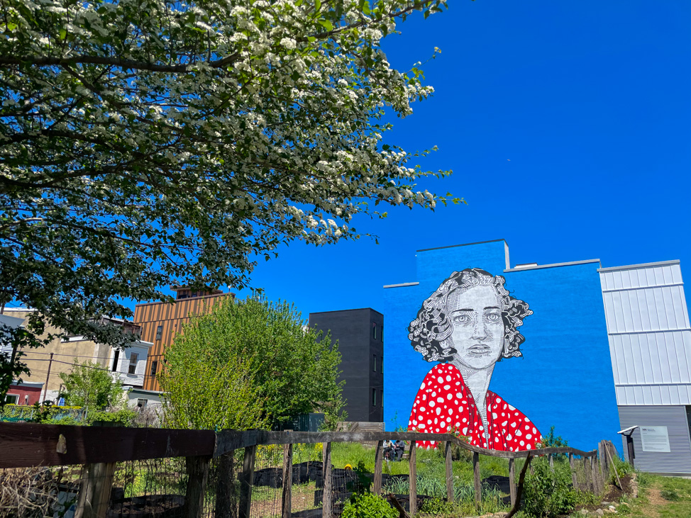 What to Do in Philadelphia: See the murals